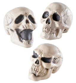 decor-cranii-schelet-halloween